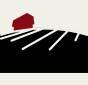 Der skal på ejendommen tinglyses en deklaration, hvorefter den til enhver tid værende ejer forpligter sig til i 10 år fra urnens nedsættelse at regne ikke at grave så dybt, at urnen bliver berørt.